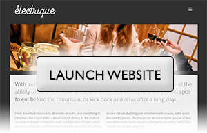 electrique-launch-website.jpg